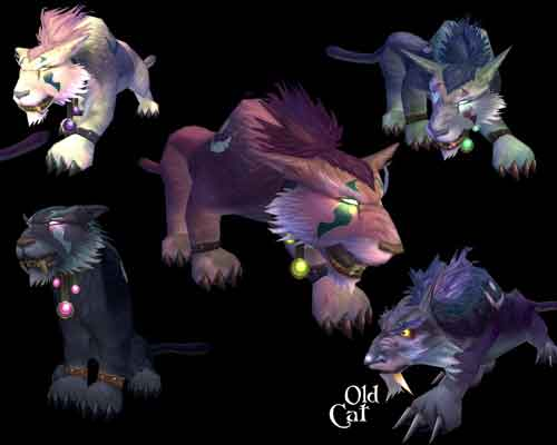 New Druid Forms!